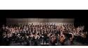 Wellesley students make District Junior Ensembles